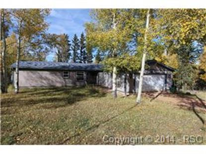 61 Maid Marian Drive Divide, CO MLS# 9596421