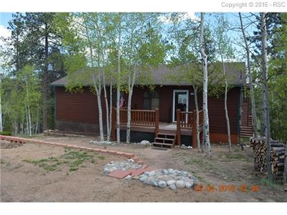 1066 Rangeview Road Divide, CO MLS# 9663727