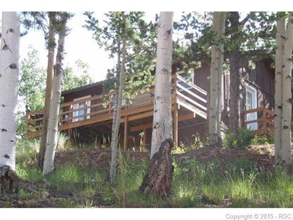 1800 Calcite Drive Divide, CO MLS# 9692975
