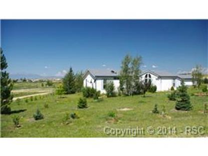13490 Palomino Drive Calhan, CO MLS# 9762217