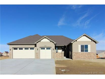 10851 Glen Canyon Drive Peyton, CO MLS# 9791009