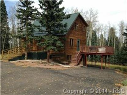 602 Divide South Drive Divide, CO MLS# 9806084