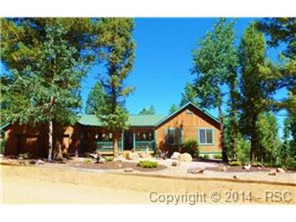 4055 Omer Lane Divide, CO MLS# 9822153