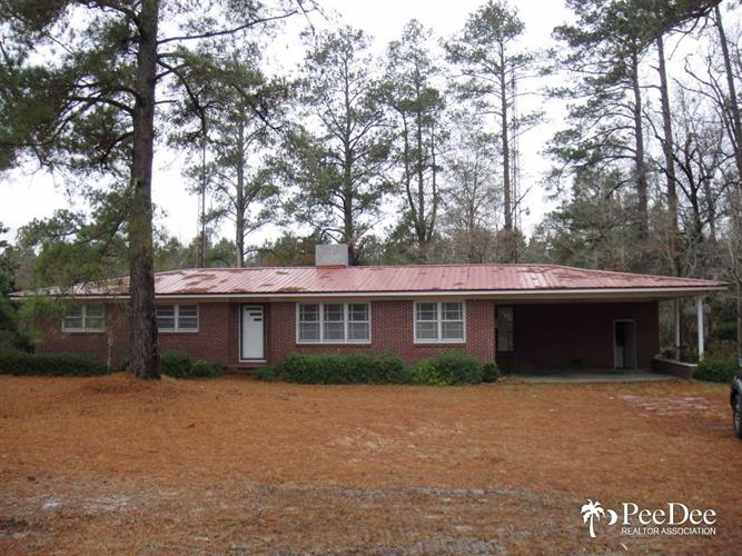 1131 S Pamplico Hwy, Pamplico, SC 29583