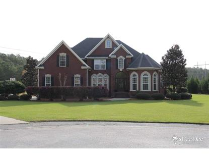 393 Winners Circle Hartsville, SC MLS# 128089