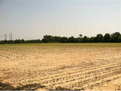 UNZONED ACRES N CASHUA Florence, SC MLS# 112720