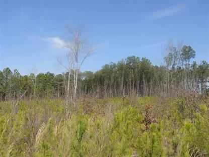 TBD Center Rd  Darlington, SC MLS# 115596