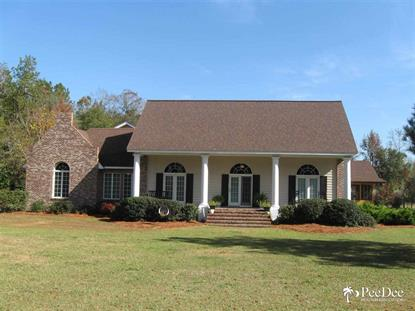 1380 Road 30  Lake View, SC MLS# 122484
