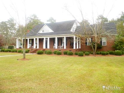 1033 Doctor Hardy Circle  Dillon, SC MLS# 122526
