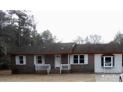 1210 Mechanicsville Highway  Darlington, SC MLS# 123380
