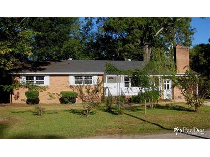 103 Wilds Street  Darlington, SC MLS# 126208