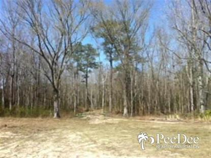 Real Estate for Sale, ListingId: 36310004, Wallace, SC  29596