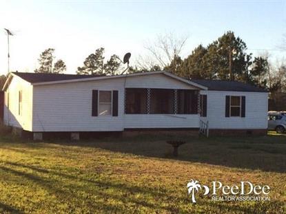Real Estate for Sale, ListingId: 36758449, Pamplico,SC29583