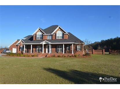 713 Deep South Ct  Hartsville, SC MLS# 126854