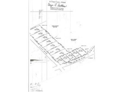 tbd S.C. Hwy 265 , Pageland, SC