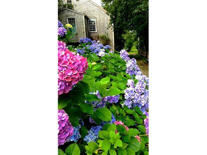 6 Gull Island Ln Nantucket, MA MLS# 21502614