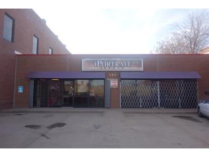221 N SAINT FRANCIS ST Wichita, KS MLS# 500119