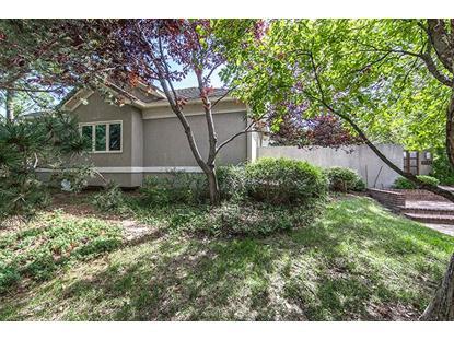 1507 N Foliage Ct Wichita, KS MLS# 508535