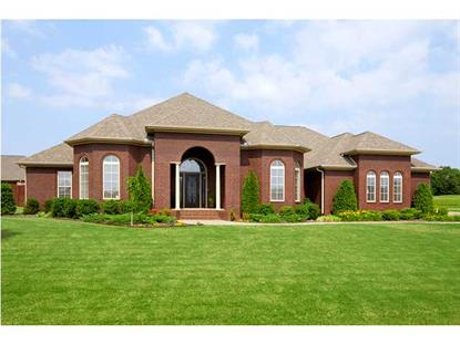 243 CYPRESS CREEK DR  Florence, AL MLS# 388607