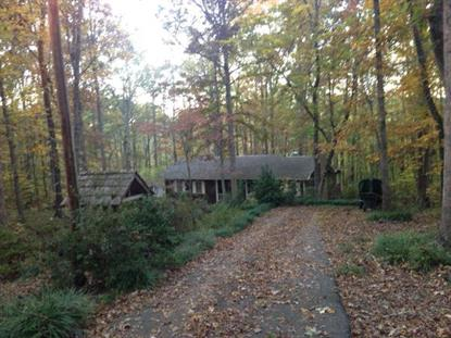 1575 Indian Woods Road  Greensboro, GA MLS# 943132