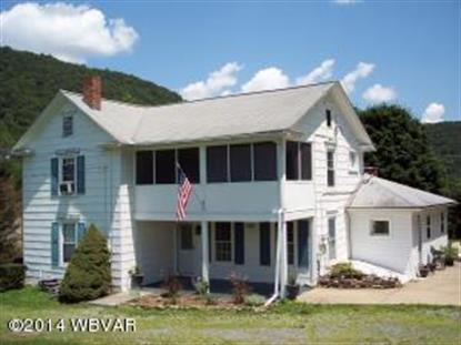 1107 MOSQUITO VALLEY RD South Williamsport, PA MLS# WB-71541
