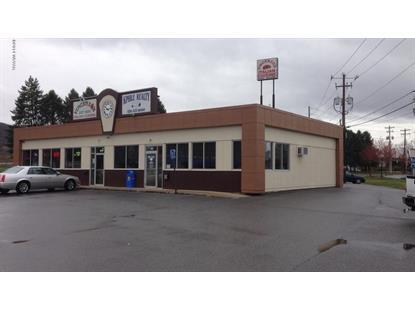 99 MAYNARD STREET Williamsport, PA MLS# WB-74049