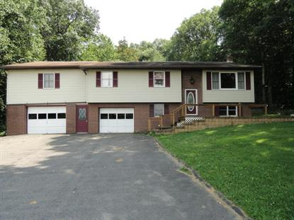 698 PINCHTOWN RD Montgomery, PA MLS# WB-74929
