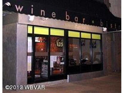 135 W 3RD STREET Williamsport, PA MLS# WB-75169
