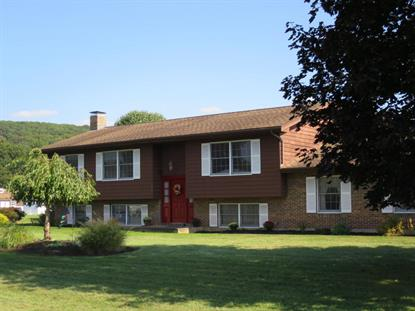 264 ADERHOLD DRIVE Hughesville, PA MLS# WB-76250