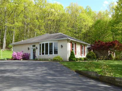 1586 PLEASANT HILLS ROAD Williamsport, PA MLS# WB-77906