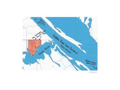 JOHN GRAGG RD  Alberta, AL MLS# 244411