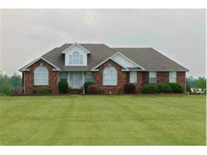 11738 Cty Rd 165  Carthage, MO MLS# 142410