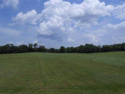 1605 Harry Wise Rd Lawrenceburg, KY MLS# 1420787