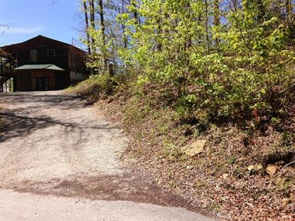 1315 Rocky Branch Road East Bernstadt, KY MLS# 1508682