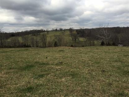 1013 US 127 Bypass Lawrenceburg, KY MLS# 1600096