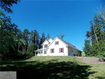 14232  Wacousta Rd. Grand Ledge, MI MLS# 82541