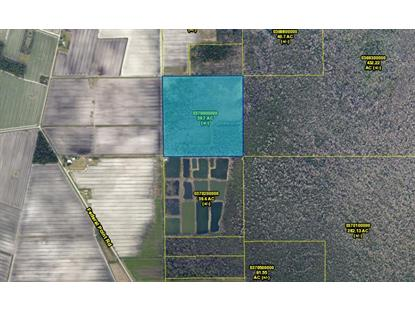Address not provided Hastings, FL MLS# 158990