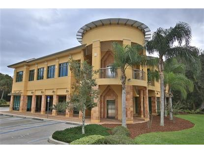 6 Meridian Home Lane Palm Coast, FL 32137 MLS# 165445