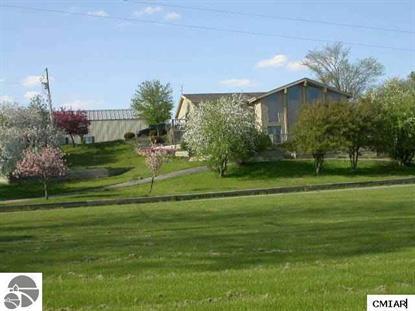 288 W St. Charles Road  Ithaca, MI MLS# 1796427