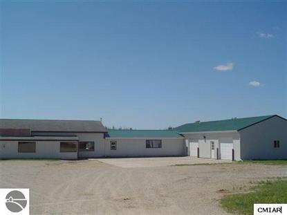 Real Estate for Sale, ListingId: 36546299, Mt Pleasant,MI48858