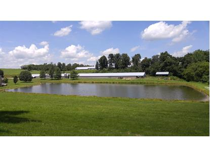 330 Taylor Cemetary Road Leitchfield, KY MLS# 24203