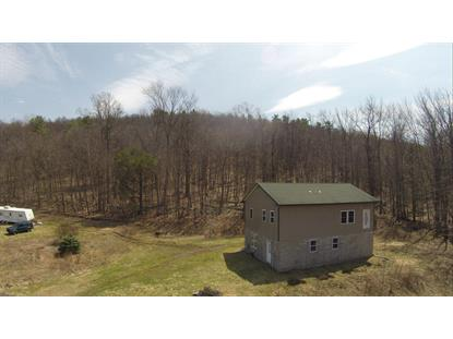 Cragle Hill Rd  Hunlock Creek, PA MLS# 14-1504