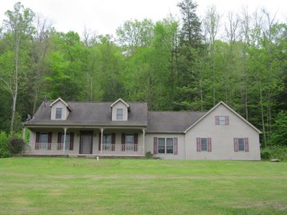 1896 MOUNTAIN RD Shickshinny, PA MLS# 16-1726