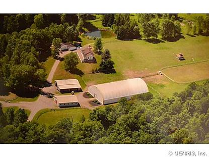 4201 Cauwels Rd Marion, NY MLS# R265660