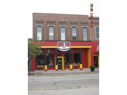 212 E Chicago Street Jonesville, MI MLS# 11038316