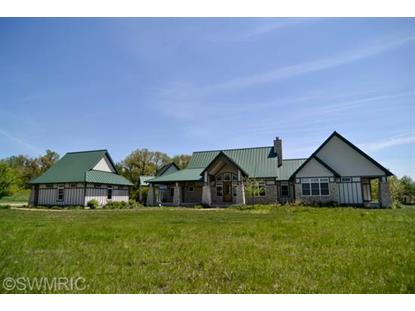 11121 Vineyard Way Buchanan, MI MLS# 13066226