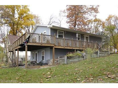 815 Turtle Lake Road Union City, MI MLS# 14052543