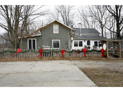 999 Sisco Road Union City, MI MLS# 14064974