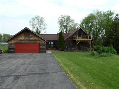 3521 Case Drive Union City, MI MLS# 15022294
