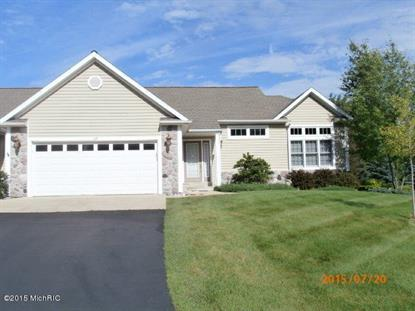 113 Stony Ridge Court Hillsdale, MI MLS# 15039037